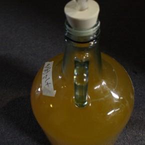 Cider: Apfelwein Batch #1